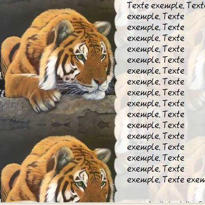 Tigre Incredimail & Papier A4 h l & outlook & enveloppe & 2 cartes A5 & signets 3 langues    ans_indian_gold_f