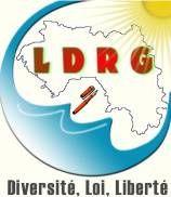 Guinée - Politique: L'élaboration d'un Projet de loi pour le Renouveau politique est en cours au sein de la LDRG
