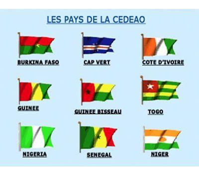 La CEDEAO en marche vers la monnaie unique horizon 2020: les éléments du débat