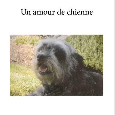 """Où trouver """"Un amour de Chienne """" :Sophie Rabussier"""