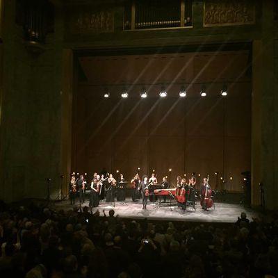 Nemanja Radulović au TCE - Offrande musicale Avenue Montaigne.