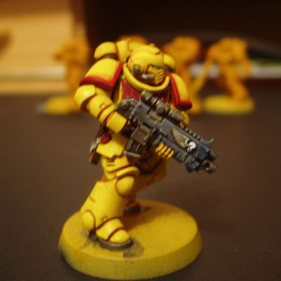 W40K : WIP sur Imperial Fists