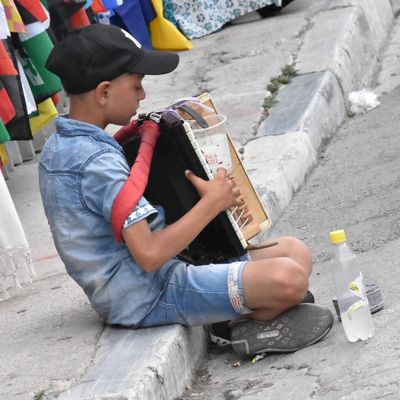 LITTLE ACCORDEONISTE