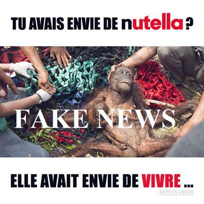 Le Nutella et l'huile de palme: non, je ne tue pas les orangs-outans