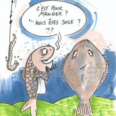 des poissons et des bulles....