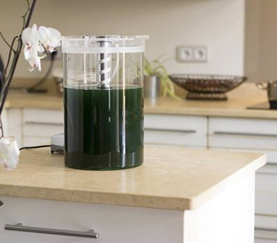 Your Own Fresh HyperProteinic Spirulina at Home or in your Restaurant