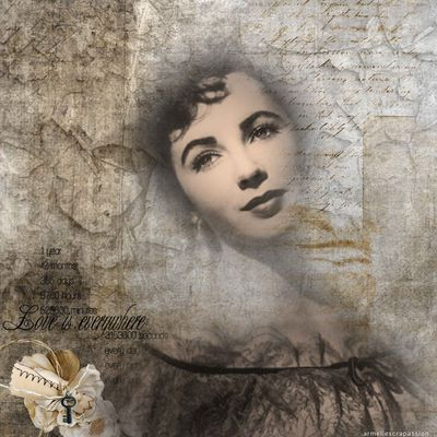 vive le scrap digital vintage !