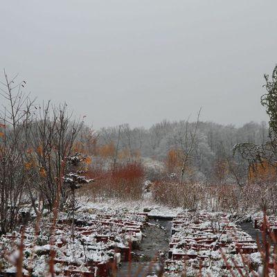 Repos hivernal