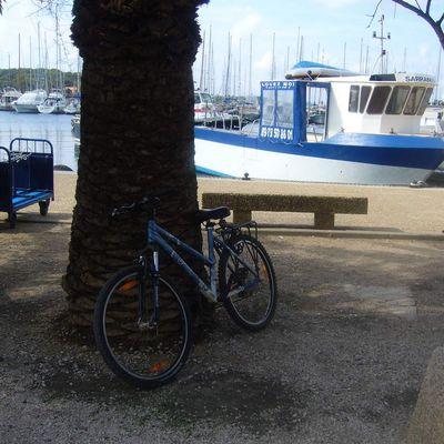 balade en vélo sur l'ile de Porquerolles (Var)