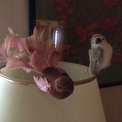 L'oiseau chanteur .Jacques Viallebesset