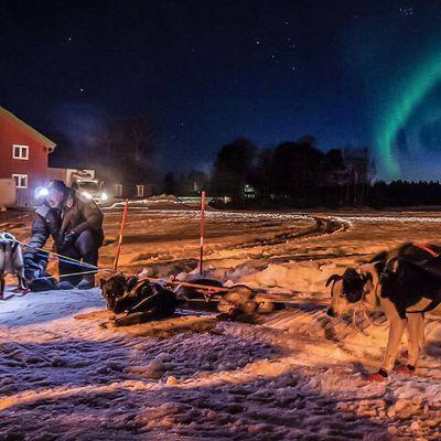Objectif: PASVIK TRAIL 2019