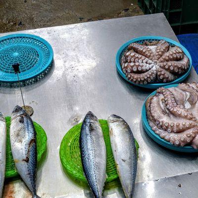 marché au poisson de Daegu;