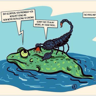 Le conte du scorpion et la grenouille