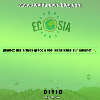 Ecosia : plantez des arbres grâce à vos recherches sur internet
