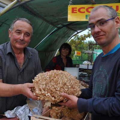 5ème fête des champignons à Tautavel en 40 photos