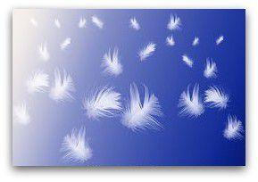 Grande carterie de Printemps chez Cartemaniak#200-6:plumes + PCC#587: bordure