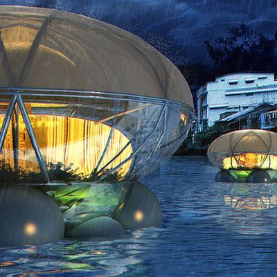 These floating Jellyfish Lodges purify polluted water and air while growing food