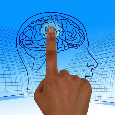 What is Neuroenergetic Kinesiology?