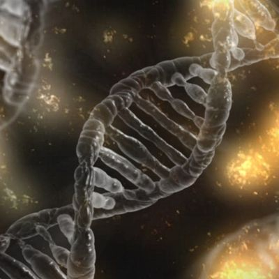 The art and science of DNA activation, healing and repair