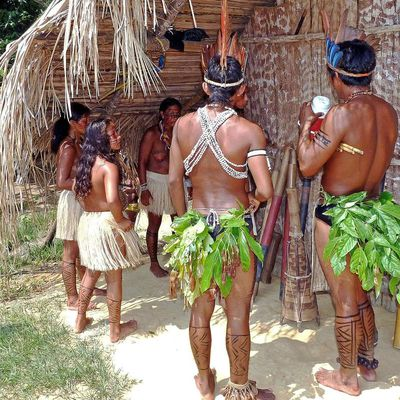 Ancient people farmed the Amazon 4,500 years ago ... and they did it better than we do
