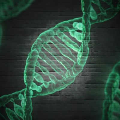 Your environment could be changing your IQ on a genetic level, study finds