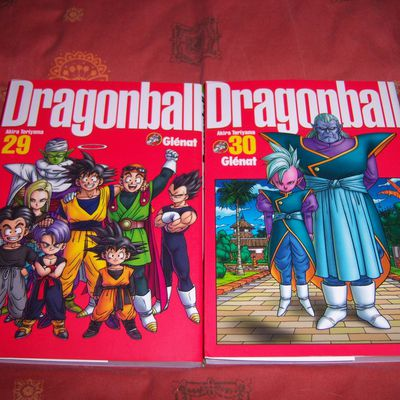 Dragon Ball Perfect édition tomes 29 & 30