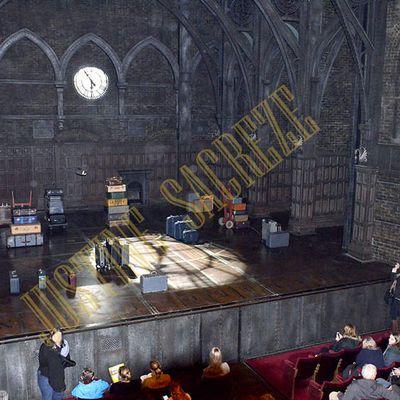 Harry Potter and the Cursed Child, une pièce de théâtre Magie...strale !