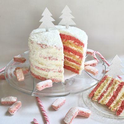 Naked Cake de Noël aux Biscuits Rose, vanille et coco