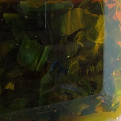 huile aromatisées aux feuilles d'ail des ours