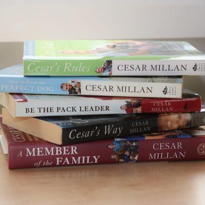 Réflexions sur Cesar Millan: on l'aime à la folie, passionnément…ou bien, on le déteste!