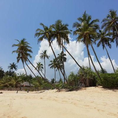 Tangalle & Galle