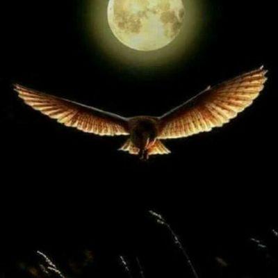 Pleine Lune du 08 Avril 2020 en Balance