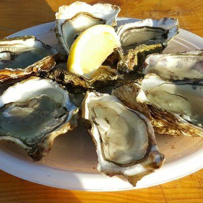La fête aux huîtres 2017, à Arès...
