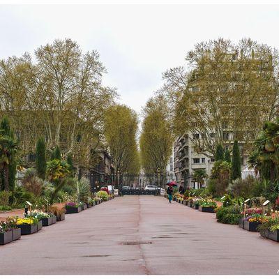 Lyon, le parc de la tête d'or
