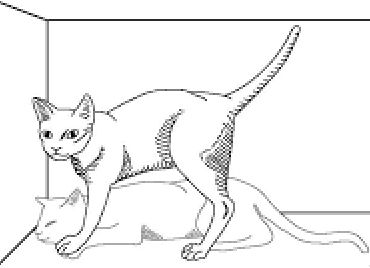 Le Grand Chat de Schrödinger