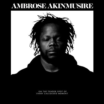 AMBROSE AKINMUSIRE «On the tender spot of every calloused moment»