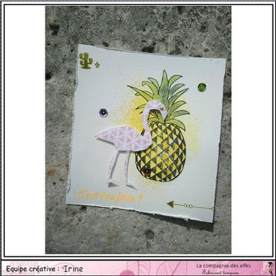 Flamant et Ananas