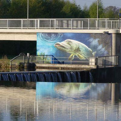 "Graffiti – ein ""doller Hecht"" am Lippesee bei Paderborn - Urlaubsregion Teutoburger Wald"