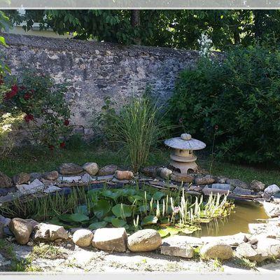 Arrangement d'un vieux bassin