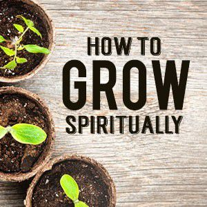 How to Grow Spiritually. Fundamental Principles of spiritual Growth.