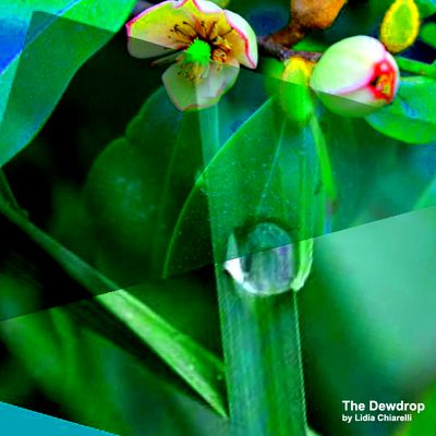DROPS OF DEW (Anthology) TZEMIN ITION TSAI (Taiwan) / LIDIA CHIARELLI (Italy)