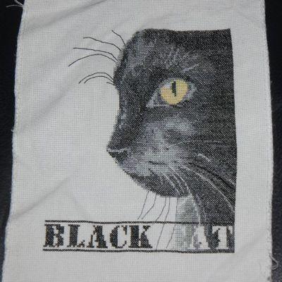 Le chat noir, fin...