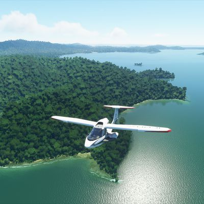 Bientôt Microsoft Flight Simulator !