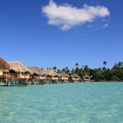 Polynésie : contrastes