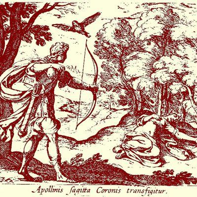Attention à la Malédiction d'Apollon !