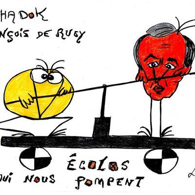 LARUE : Les socialistes ont tout pompé sur les Shadoks, la preuve , je vous présente François DE RUGY