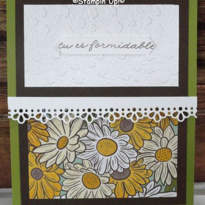 "CARTE A MESSAGE CACHE,STAMPIN""UP!."