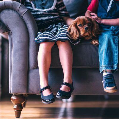 Bien choisir les chaussures des enfants