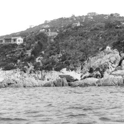 1949 au sud de l'Ayguade du Levant