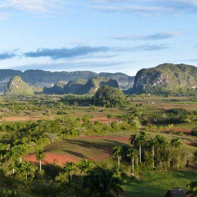 Cuba - Région de Viñales